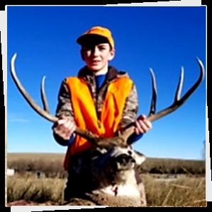 Deer 2020